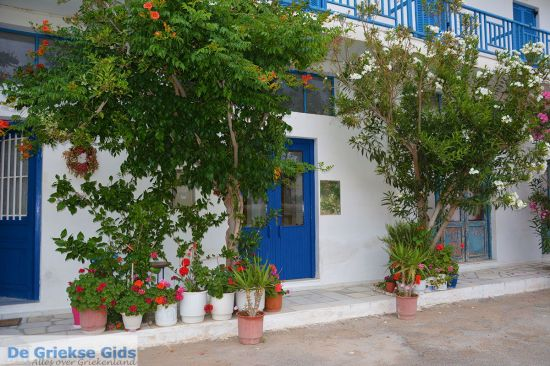 Appolonas Naxos